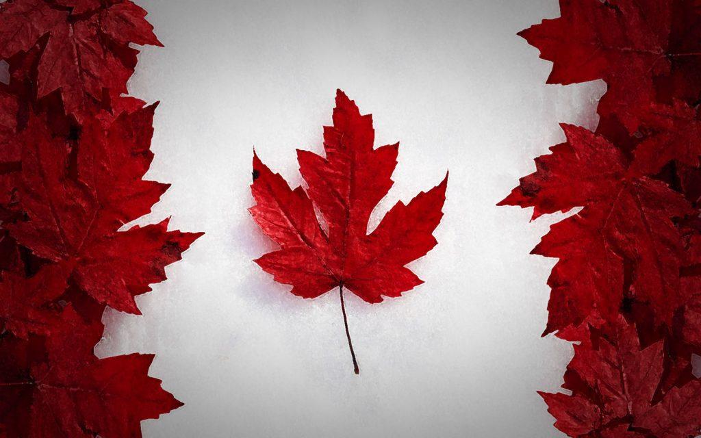 خرید شغل کانادا مهاجرت پرچم